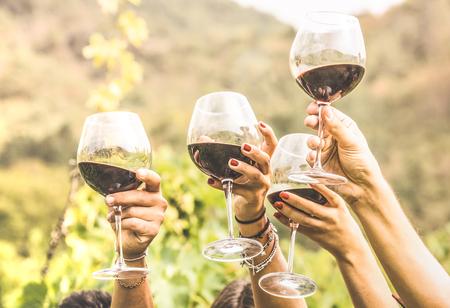 Hände, die das Rotweinglas und -freunde haben den Spaß zujubeln an der Weinprobeerfahrung rösten - junge Leute, die zusammen Erntezeit an der Bauernhausweinberglandschaft genießen - Jugend- und Freundschaftskonzept Standard-Bild