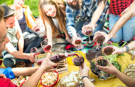 Side view of friends serving and toasting red wine glasses - Millennials having fun cheering at picnic winetasting - Young people enjoying summer at lunch bbq garden party - Youth friendship concept Stock Photo
