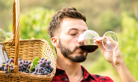Young man enjoying red wine taste at winery vineyard outdoors - Expertise concept with professional sommelier tasting bio product at harvest time - Organic grape production experience at farmhouse