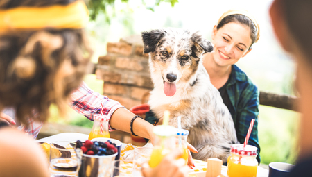 Happy friends having healthy pic nic breakfast at countryside farm house - Young people millennials with cute dog having fun together outdoors at garden party - Food and beverage lifestyle concept Standard-Bild