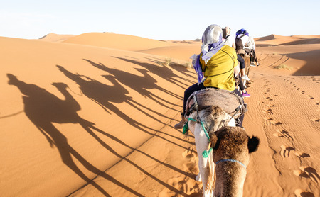 Tourists caravan riding dromedaries through sand dunes in Sahara desert near Merzuga in Morocco - Wanderlust travel concept with people travelers on camel trip adventure tour - Warm bright filter