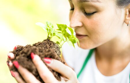 Female worker taking care on newborn basil plant at biological farm - Organic agronomy and earth day concept with farmer girk working on environmental sustainable culture - Warm bright filter
