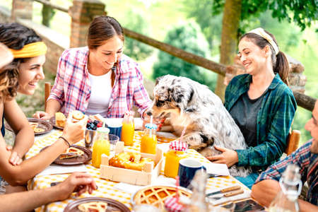 Young people on healthy picnic breakfast with cute puppy at countryside farm house - Alternative lifestyle concept with happy friends having fun together outdoors at garden party - Focus on dog Фото со стока - 151317914