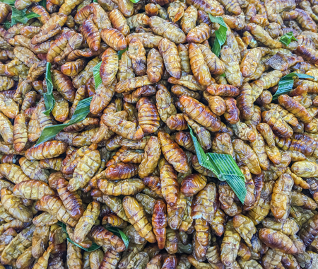 gusanos: Fried worms sell in market.