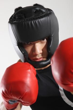 Portrait of male boxer Stock Photo - 16141709