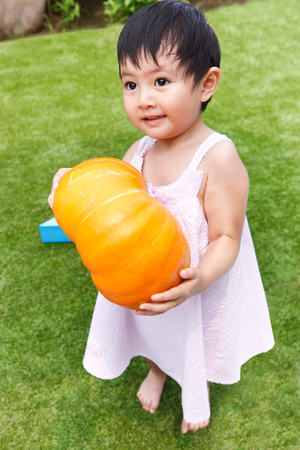 A shot of Portrait of a little girl holding a pumpkin photo