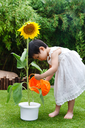 A shot of Little girl with a sunflower photo