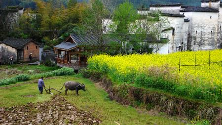 Wuyuan County, Jiangxi province
