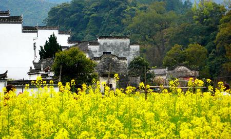 Wuyuan County, Jiangxi province think Creek Village Scenery Stock Photo
