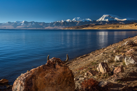 Tibet Alima near Yumco lake scenery