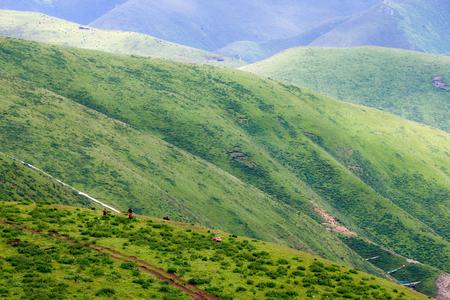 Sichuan province Seda scenery