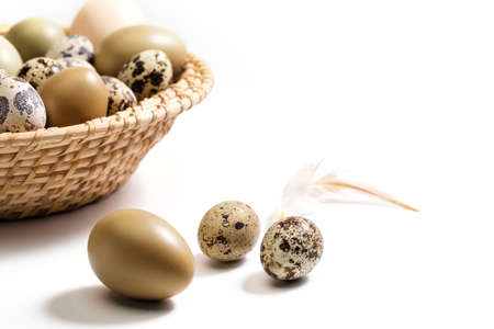 A basket of eggs, duck eggs quail eggs and feathers Stock Photo