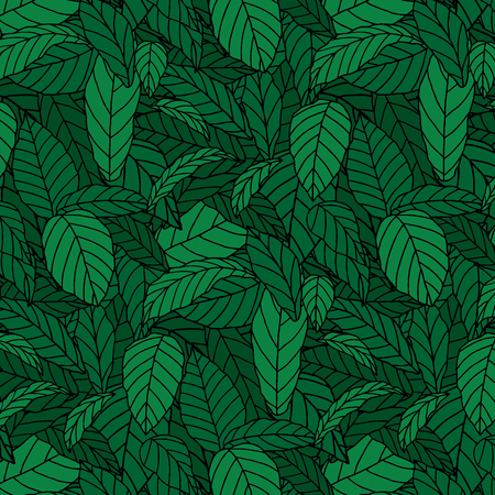 Hand drawn  illustration of pattern of green leaf. wallpaper background 向量圖像