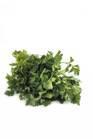Parsley bunch tied  isolated on white