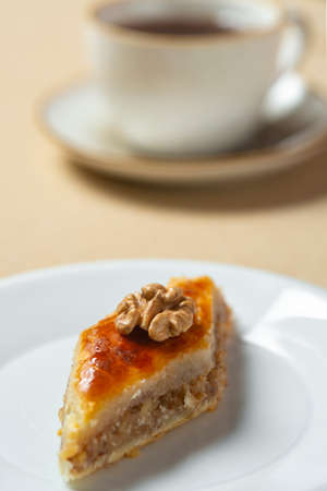 Homemade baklava with nuts and honey syrup.eastern cuisine