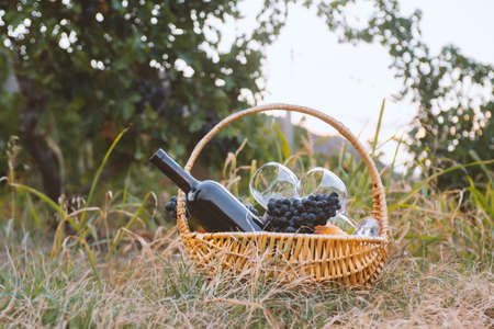 Picnic basket with red wine and fruit on green lawn.