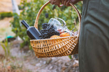 girl carries a picnic basket with red wine and fruit