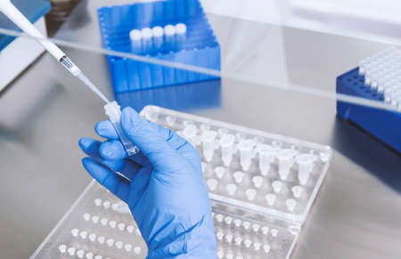 hands of a lab technician with a tube of blood sample and a rack with other samples / lab technician holding blood tube sample for study.Corona virus pandemic concept.Coronavirus vaccine development Stockfoto