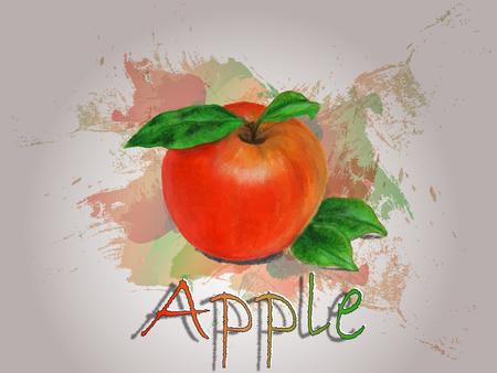 Apple watercolor vector food illustration.Hand painted watercolor illustration.