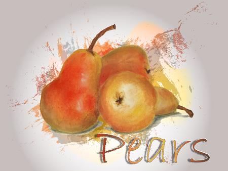 Pear watercolor vector food illustration.Hand painted watercolor illustration.