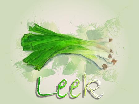 Leek watercolor vector food illustration.Hand painted watercolor illustration. Vettoriali