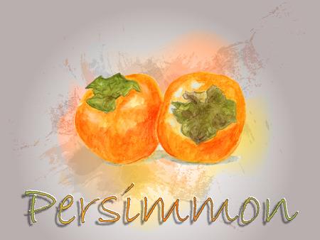 Persimmon watercolor vector food illustration.Hand painted watercolor illustration. Vettoriali