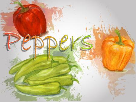 Illustrazione dell'alimento di vettore dell'acquerello del pepe Illustrazione dell'acquerello dipinto a mano. Archivio Fotografico - 93070278