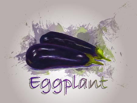 Eggplant watercolor vector food illustration.Hand painted watercolor illustration.