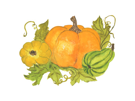 Three vector pumpkins with leaves on white background Vettoriali