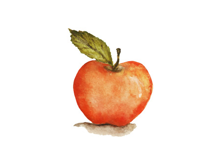 Ripe apple with a leaf on a white background Vettoriali