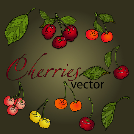 Set of cherries of different colors with leaves on a green background