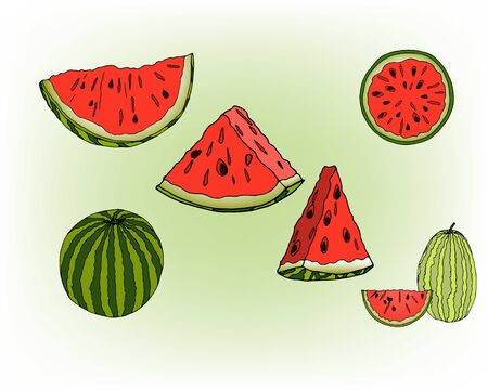 Ripe and juicy watermelons. Set of watermelons. Vettoriali