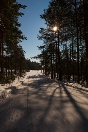 Winter road in the moonlight photo