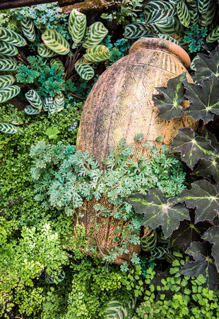 Garden decoration by green fern and pottery jar photo