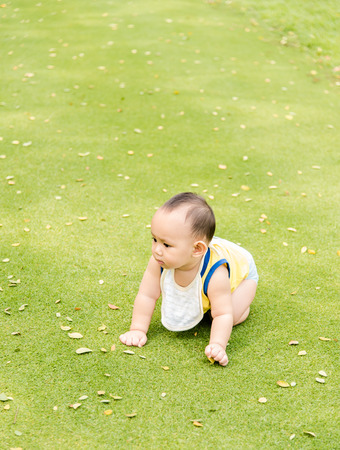 baby crawling: baby crawling on the green grass field in the park Stock Photo