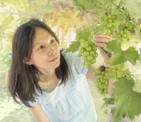 reach out: vine yard at Thailand, beatiful Asian women reach out for grape bunch