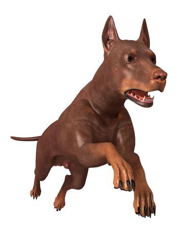 mammalia: Render dog running isolated on white background Stock Photo