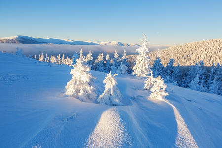 Beautiful mountain landscape in the winter day.