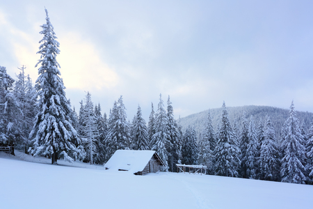 christmas grounds: High on the mountains in the forest covered with snow there is lonely old wooden hut standing with fence on the lawn.  Stock Photo
