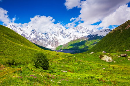 beautiful location: Large green lawn covered with pink  flowers, and all around stand high mountains in snow and beautiful sky on a summer day. Upper Svaneti, Georgia, Europe. Happy lifestyle. Stock Photo