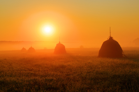 The bright disk of the sun illuminates with a warm orange light the mountain meadow where loose stacked hays built around a central pole stand, which are shrouded in a light mist.