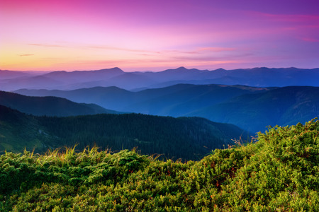 Under the purple sky lay down mountain hills covered with creeping pines and firs, surrounded by mystical haze.