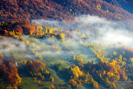 Thick fog, like milk, covered the valley, behind which rise mountain hills, on which fall warm rays of the sun.