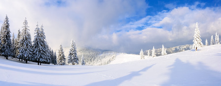 Spectacular panorama is opened on mountains,  trees covered with white snow,  lawn and blue sky with clouds. The game of light and shadow beautifully plays with volumes. Stock Photo