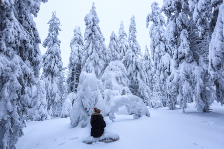 The girl in ski suite sits on the lawn covered with snow the nice trees are standing poured with snowflakes in frosty winter morning. Beautiful winter background. Dreamy firs in the enchanted forest. Stock fotó