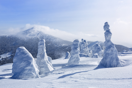 High on the mountains, on the lawn stand trees covered with snow, which look as ice sculptures. Textured forms. Landscape in a winter cold day. Light shines in the snow. Stock Photo