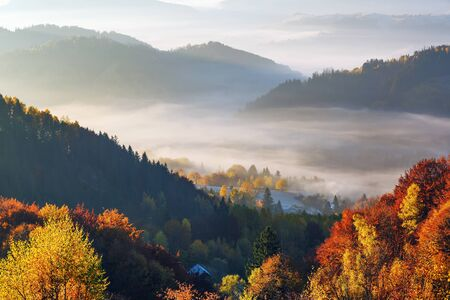 Beautiful autumn rural scenery. Landscape with amazing mountains, fields and forests covered with morning fog. The lawn is enlightened by the sun rays. Touristic place Carpathians, Ukraine, Europe.