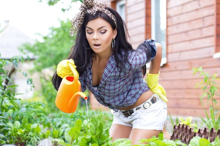 sexy housewife: Watering the flowers Stock Photo