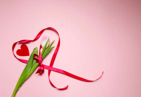 tulip and heart made of red ribbon on a pink background. Valentines Day. High quality photo