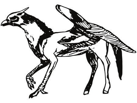 talon: Made by hand illustration of a series of mythical creatures, griffin